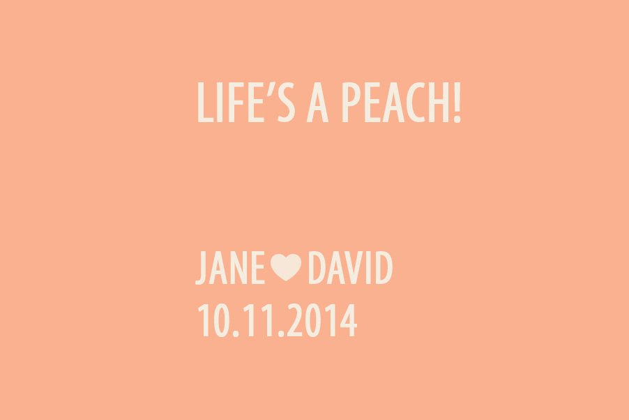 Cover for Jane and David Wedding