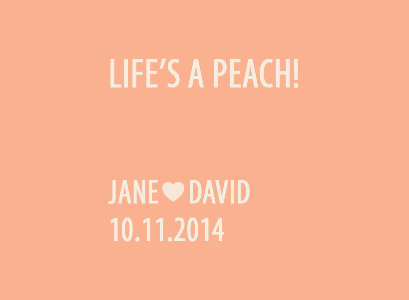 Flip Book Cover Design Jane and David 10.11.2014